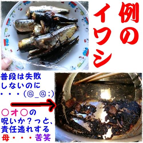 2011-07-31昼食