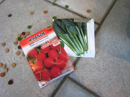 プランター種まき