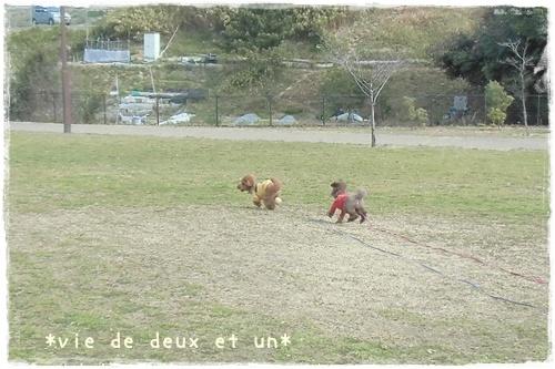 20130226blog1.jpg