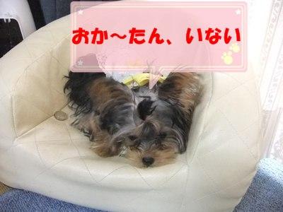 DSCF5645.jpg