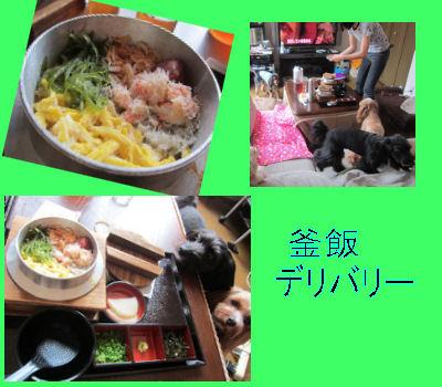 2011.6.4おひる