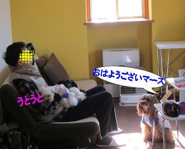 2011.5.15おはよ=
