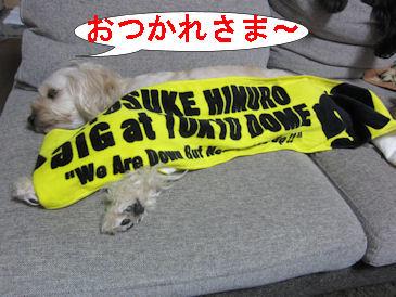 2011.6.11おつかれさま~