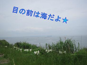 2011.6.19海