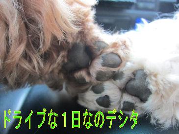 2011.6.19お手手