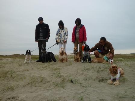 海岸で集合