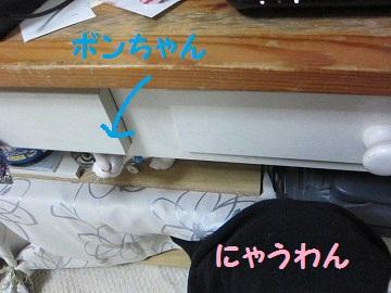 IMG_7192 2012 (18