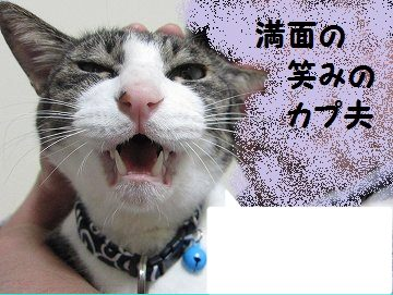 IMG_7210 2012 101