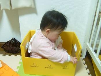 箱の中で遊ぶ娘