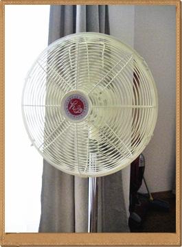 IMG_6436扇風機