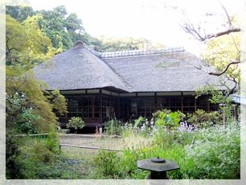 IMG_7926鎌倉