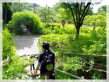 IMGP0194郷土の森