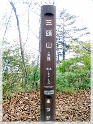 IMG_8658三頭山