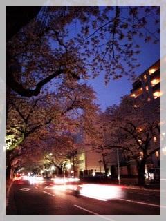 110409_182845夜桜