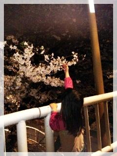 110409_190533夜桜