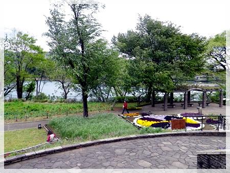 IMGP1856津久井湖城山公園