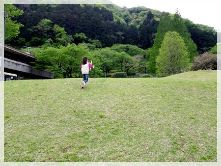 IMGP1860津久井湖城山公園