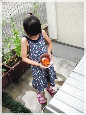 IMG_1411枝豆