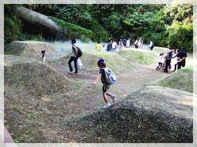 IMG_2804昭和記念公園