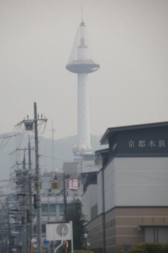 20130207 (16)