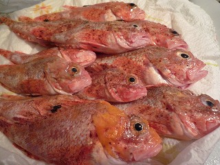 31 dic 2009 pesce