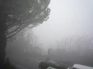 nebbia 001