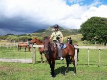 Fern river horseriding (12)