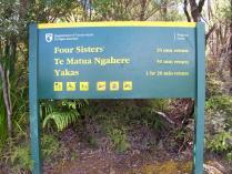 Dec 21st, 2011 NZ一番デカい木 (8)