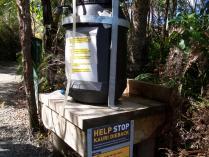 Dec 21st, 2011 NZ一番デカい木 (10)
