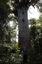 Dec 21st, 2011 NZ一番デカい木 (36)