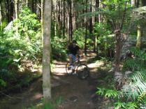 Dec 24th, 2011 Cycling in Rotorua (5)