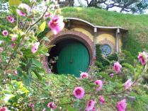 hobbiton blog (22)