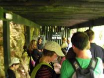 Dec 28th Waitomo caves (5)