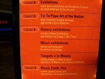 Wellington museum (2)