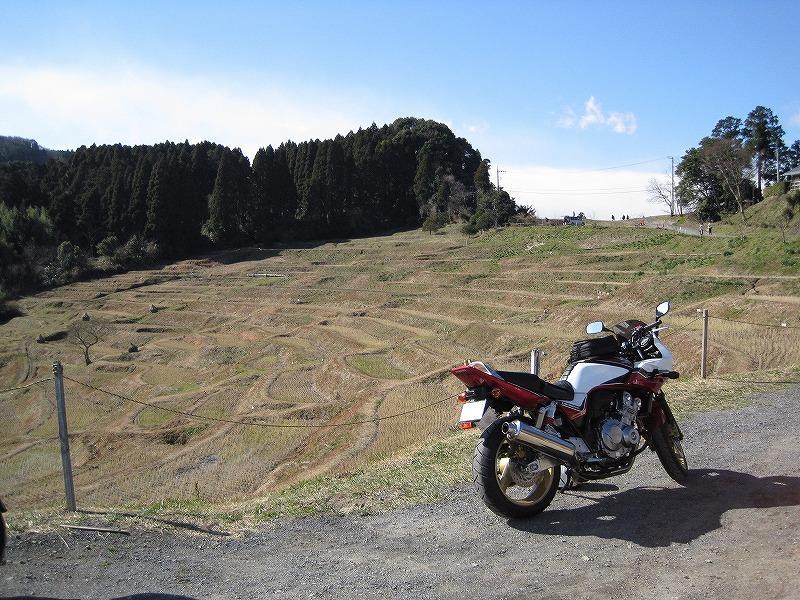 20100206_003.jpg