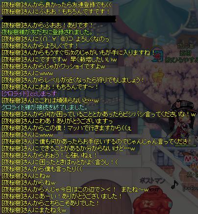 夜桜樹さん2