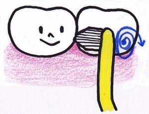 ワンタフトブラシ 歯間部