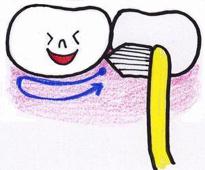 ワンタフトブラシ 歯頸部