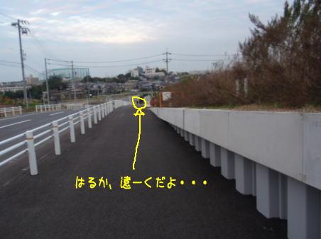 image211120a.jpg