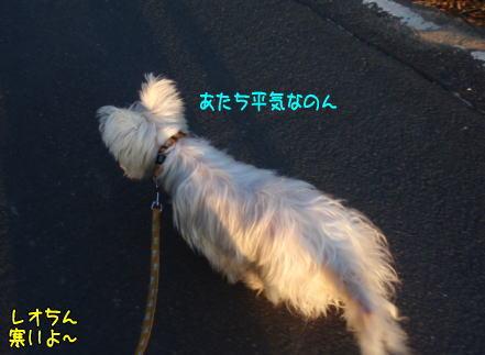 image211209.jpg