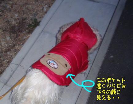 image211221.jpg
