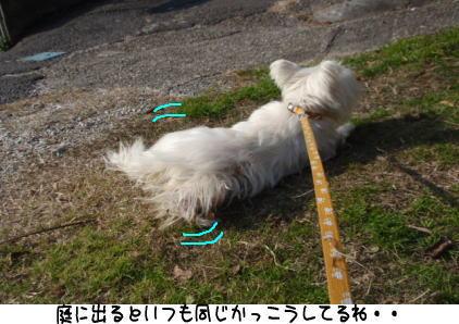 image211226.jpg