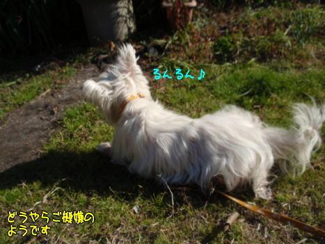 image220109a.jpg