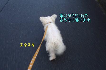 image220202.jpg