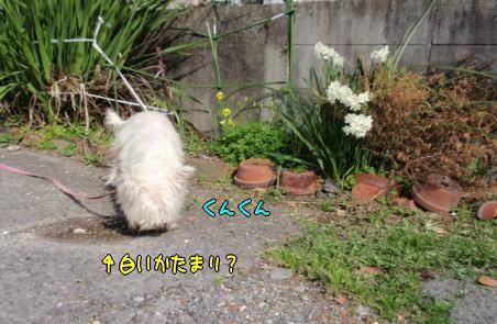 image220316.jpg