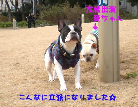 1月17日うつぼ公園にて