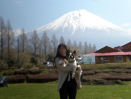 憧れの富士山だ!