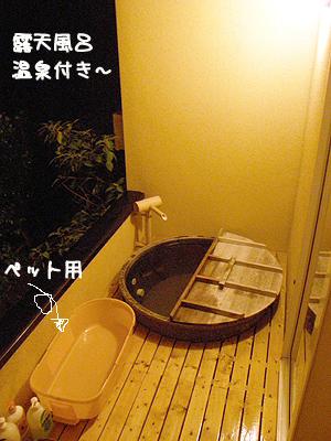 いつでも温泉入れるっていいなぁ~♪