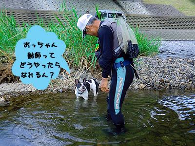 鮎を食べたい一心で!