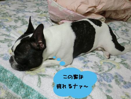 お疲れさんっ!